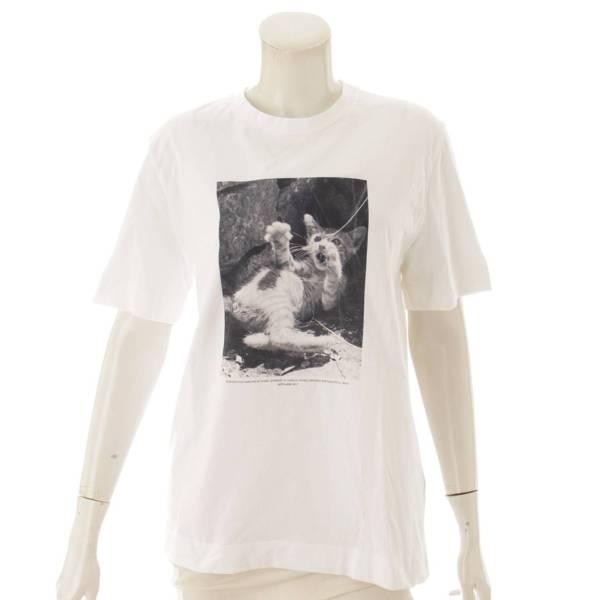 17SS マリオ・ソレンティ キャット フォトプリント Tシャツ ホワイト S